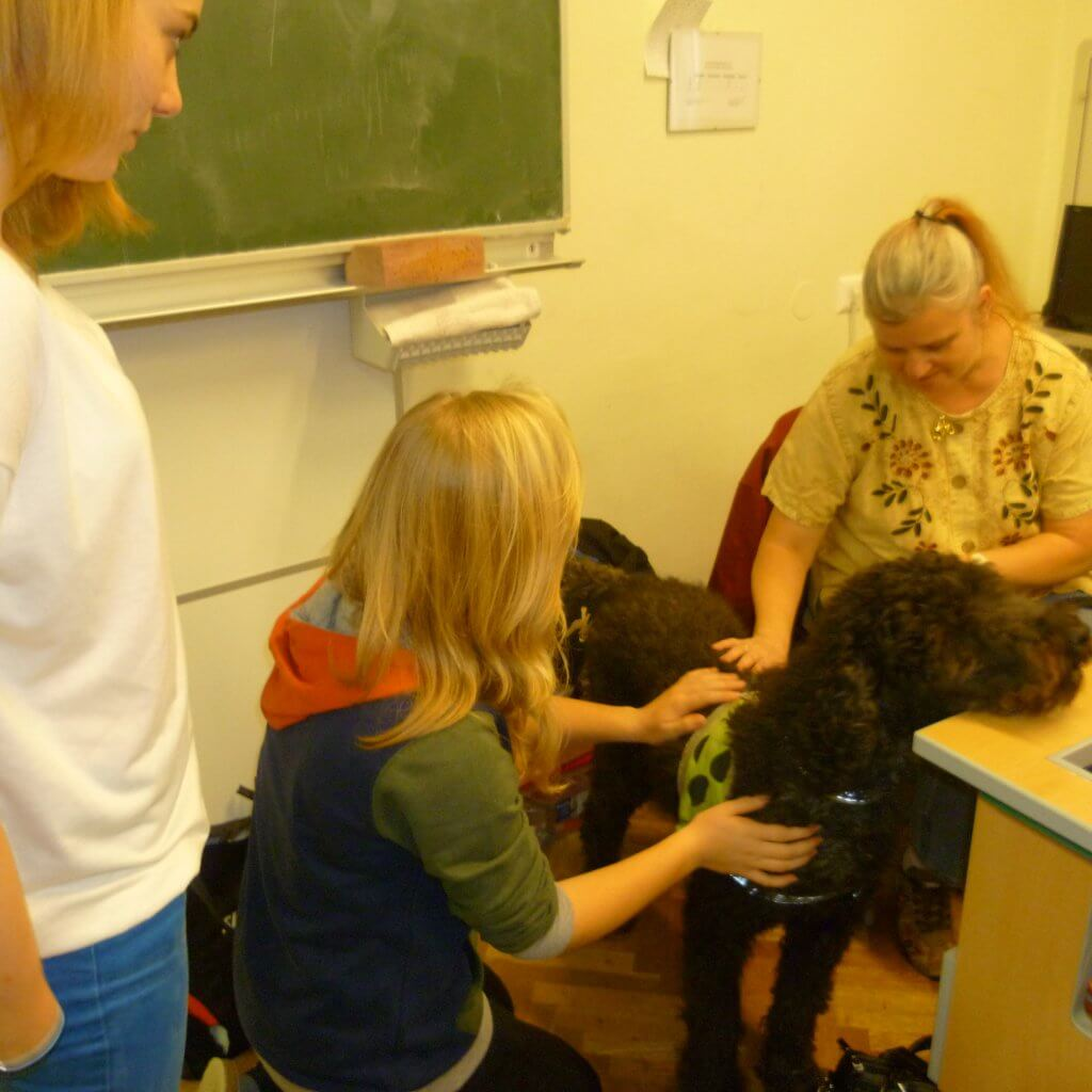 Sabine und eine Schülerin streicheln Lea die ihren Kopf auf Tisch ablegt