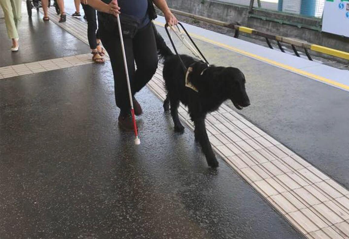 Arya führt Sabine an einem Leitreifen über einen U-Bahn-Bahnsteig